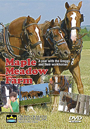 Maple Meadow Farm DVD